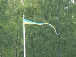 schwedischer Wimpel