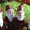 Harvesttime Teelichthalter für ein großes Teelicht Tomtekreis rot