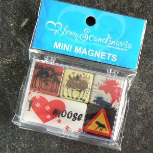 Tolles Souvenir: Glas Magnet Set Elche