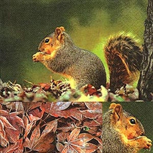 """20 Papier Servietten """"Eichhörnchen"""" für den Herbst"""