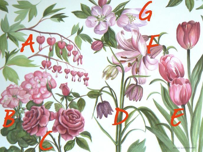 schwedische Vokabeln für rosa Blumen